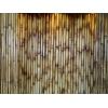 Бамбук и изделия из бамбука