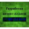 Бизнес-план Омск и Омская область
