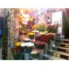 Цветы. Продам торговую точку