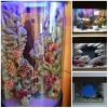 Декоративный задний 3D фон для аквариума на заказ
