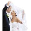 Химчистка, отпаривание свадебного платья и костюма