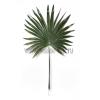 Искусственные и стабилизированные пальмовые ветки и листья