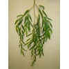 Искусственные и стабилизированные ветки и листья