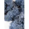 Стабилизированный мох оптом по Сибири